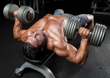 Dumbbell-Bench-Press-Opener.jpg